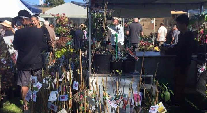 Kariong plant lovers 2016